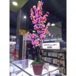 Home Flower Lightening (Big)