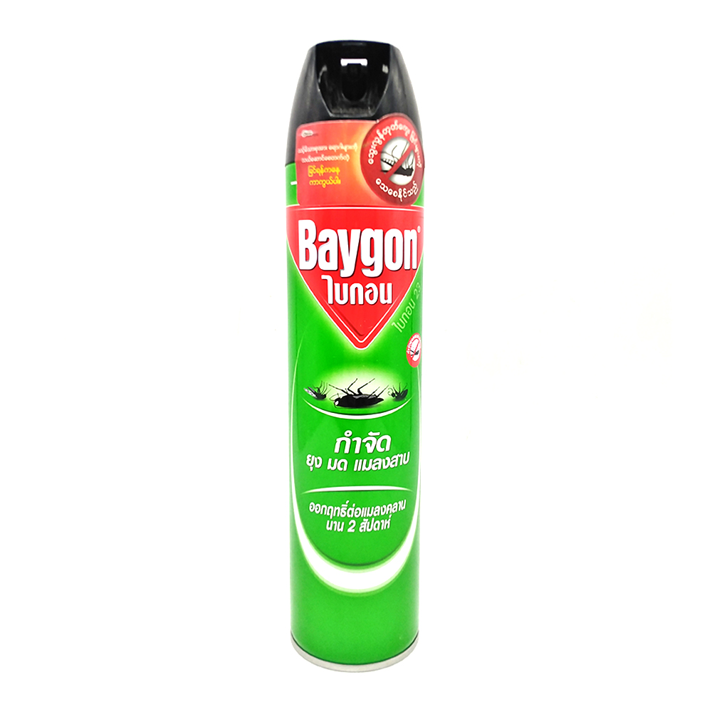 Baygon Insect Killer Spray Regular 600ml