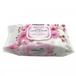 Ultra Compact Wet Wipes Japanese Cherry Blossom 90's